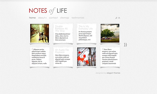 daily notes wordpress theme