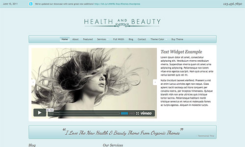 health and beauty wordpree theme