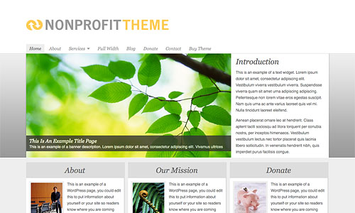 non profit wordpress theme