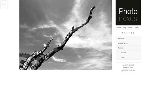 photo nexus wordpress theme