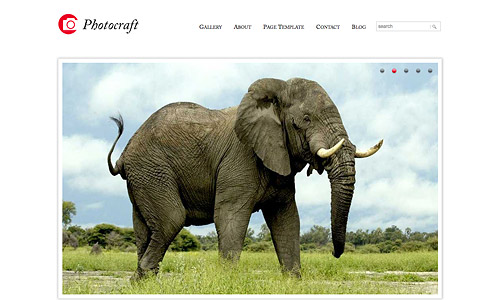 photocraft photography wordpress theme