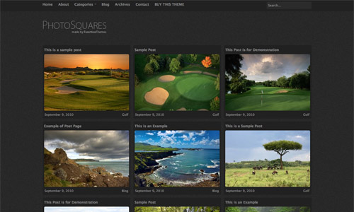 photosquares gallery wordpress theme