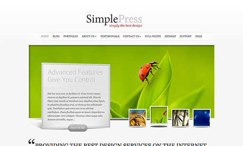 simple press wordpress theme