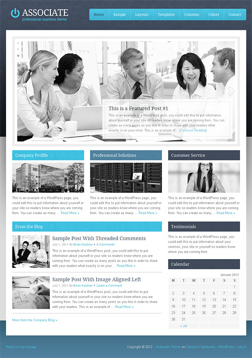 associate wordpress theme