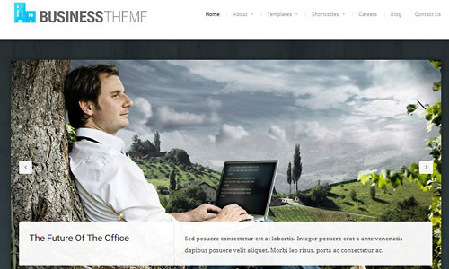 business theme wordpress theme