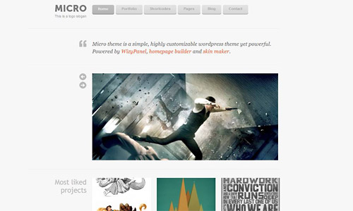 micro wordpress theme