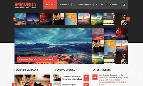 immunity wordpress theme