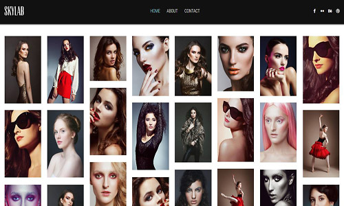skylab wordpress theme