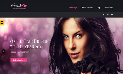 hairdo wordpress theme
