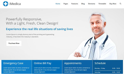 imedica wordpress theme