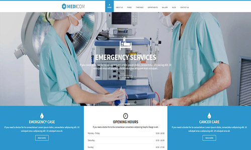 medicom wordpress theme