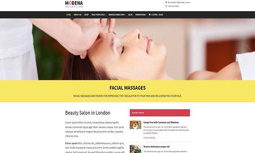 modena wordpress theme