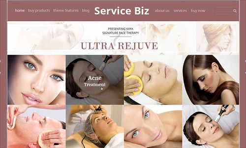 service biz wordpress theme