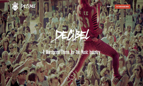 decibel wordpress theme