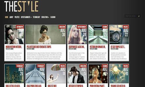 the style wordpress theme