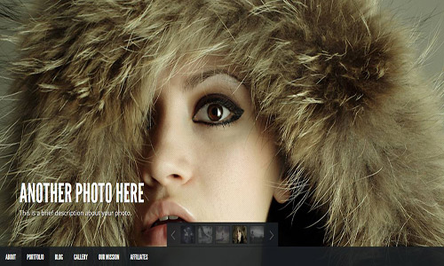 gleam wordpress theme