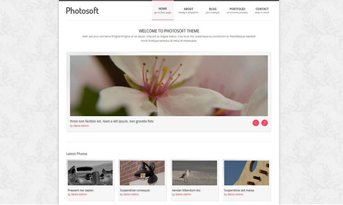 photosoft wordpress theme