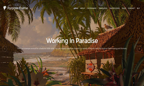 purpose wordpress theme