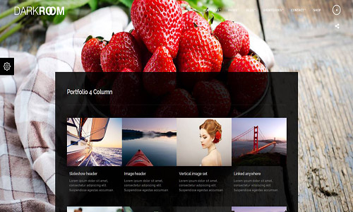 darkroom wordpress theme
