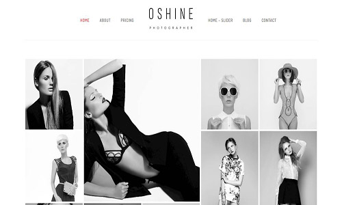 oshine wordpress theme