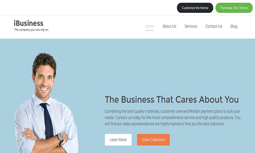 ibusiness wordpress theme
