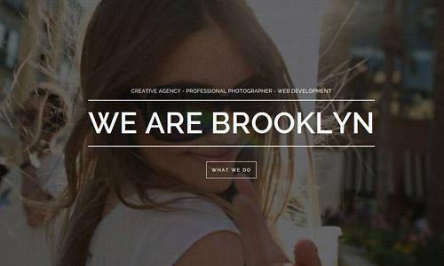popular-wordpress-brooklyn