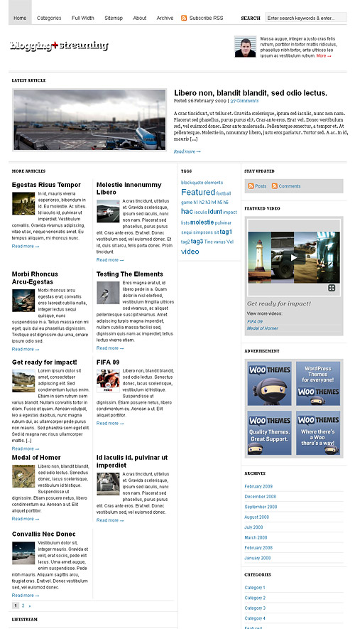 blogging stream wordpress theme