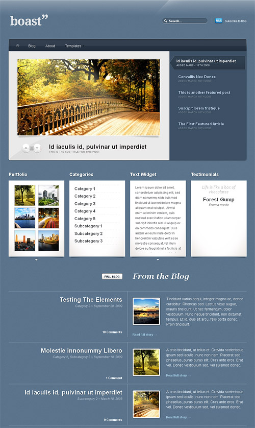 boast wordpress theme