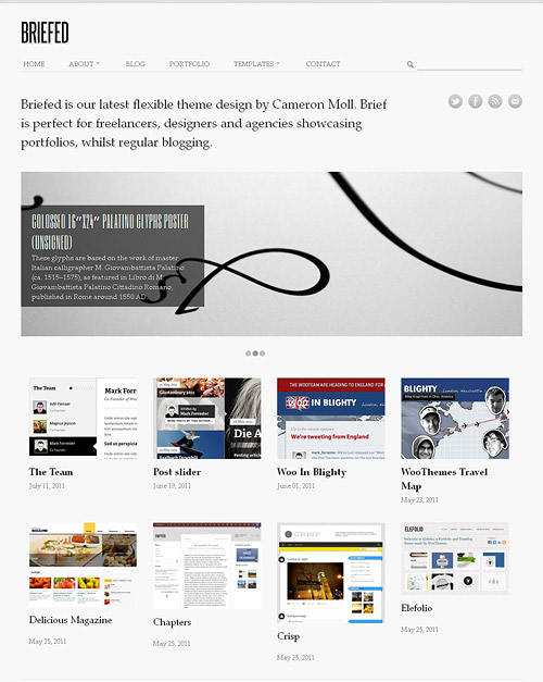 briefed wordpress theme
