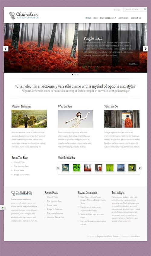 chameleon wordpress theme