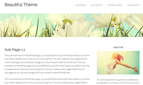 wordpress-chic-beautiful-theme