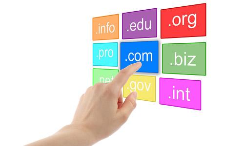 important domain registration