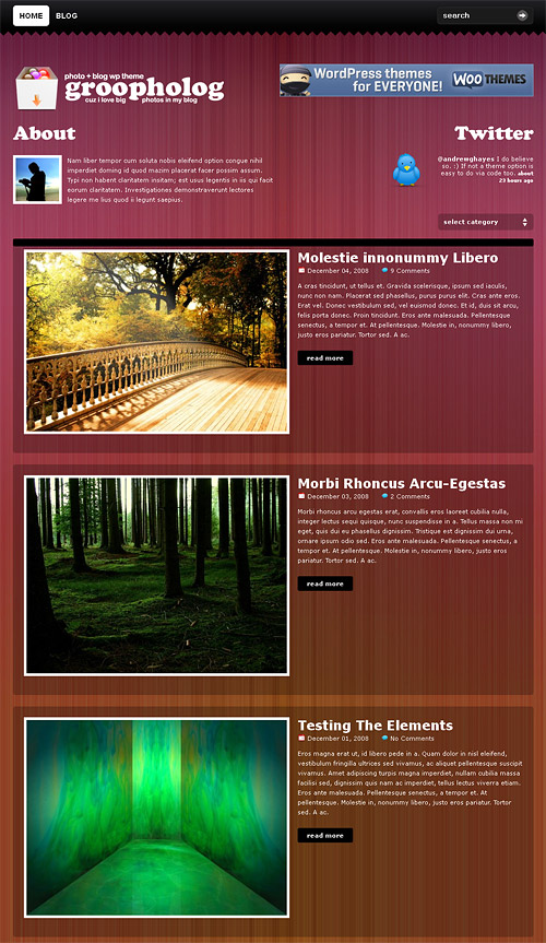 groovy photo wordpress theme