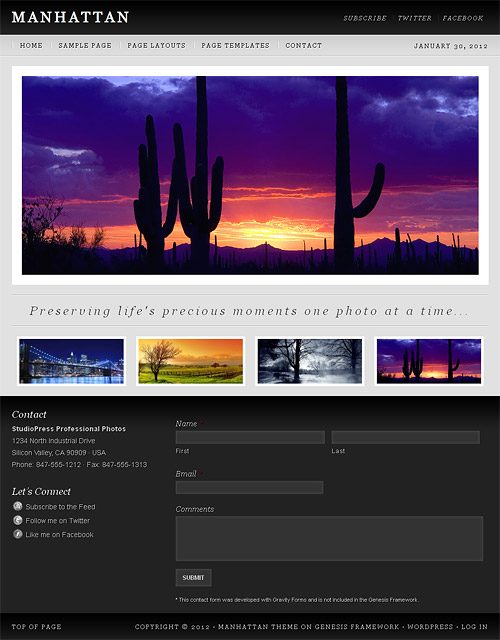 manhattan wordpress theme