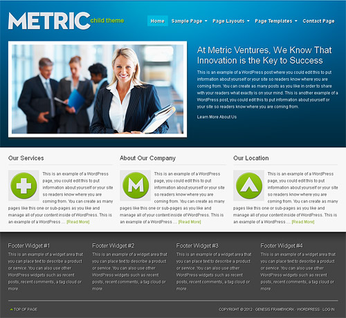 metric wordpress theme