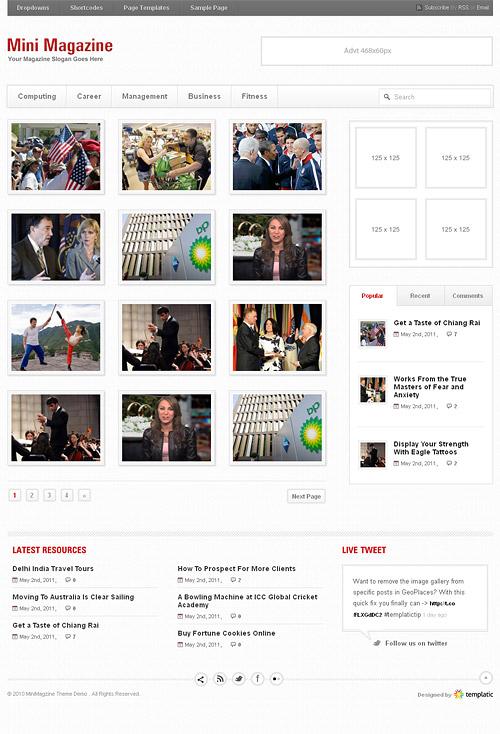 mini magazine light wordpress theme