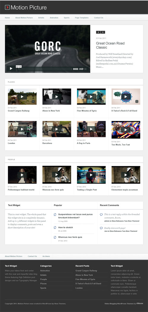 motion picture wordpress theme