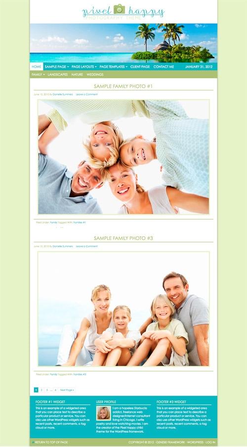 pixel happy wordpress theme