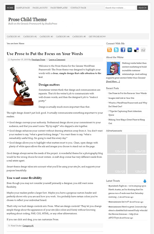 prose wordpress theme