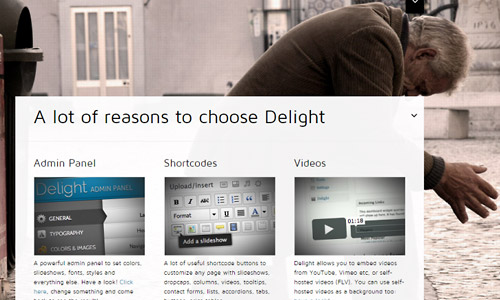 wordpress-theme-features
