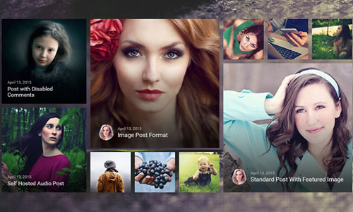 premium-themes-wordpress