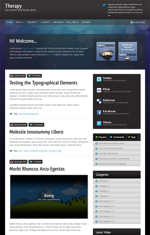 therapy wordpress theme