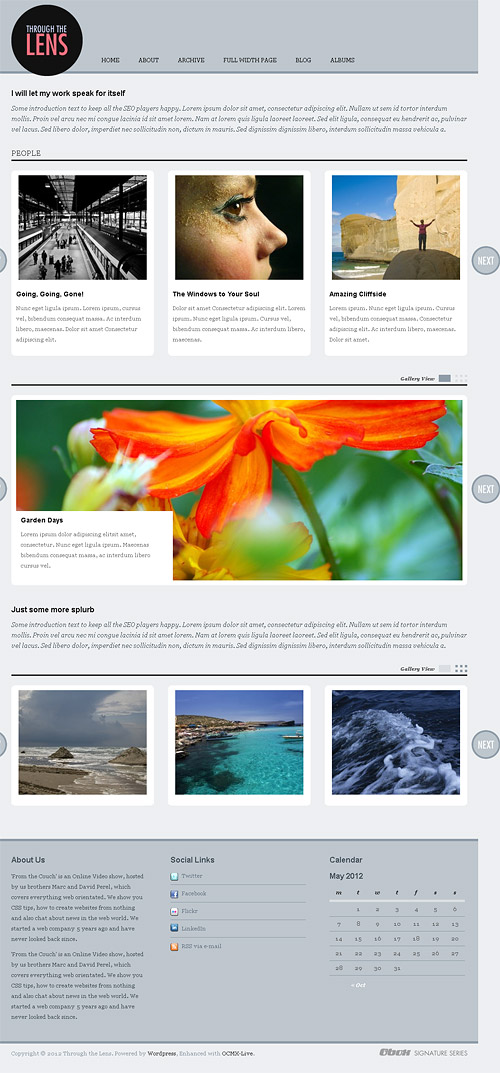 through the lens wordpress theme