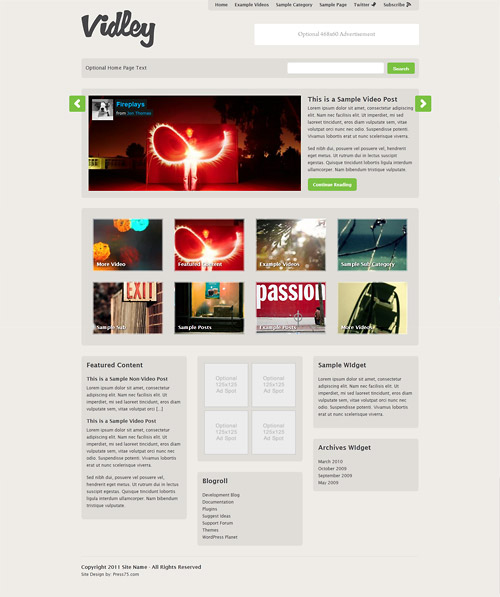 vidley wordpress theme